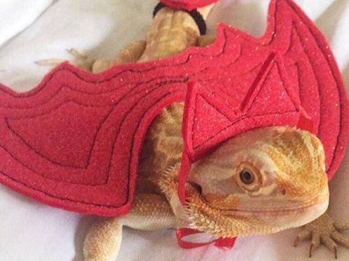 Bearded Dragon Costume