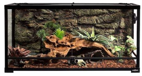 Best Bearded Dragon Cages 2