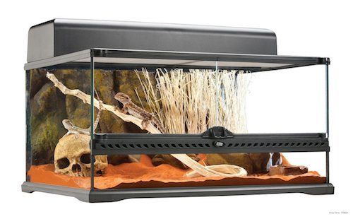 best bearded dragon cages 3