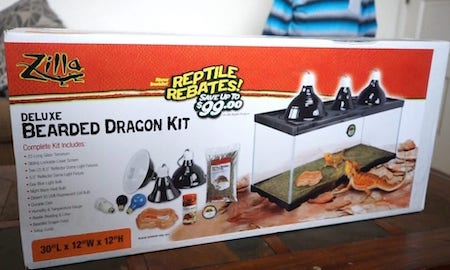 Bearded Dragon Starter Kit