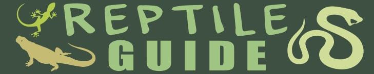 Reptile.Guide