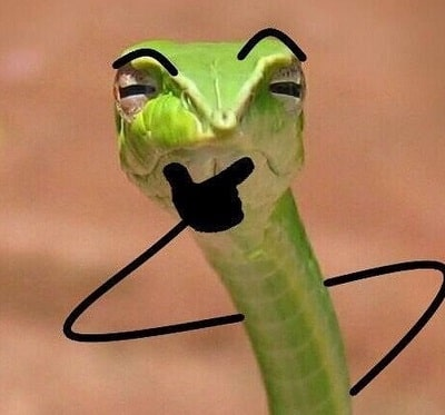 Funny Snake With Drawn on Arms 19