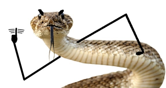Snake With Drawn on Arms 9