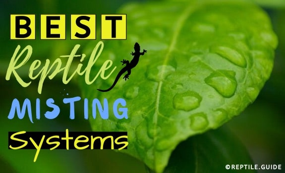 best reptile misting systems