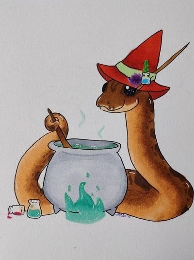 Snake With Hat 12