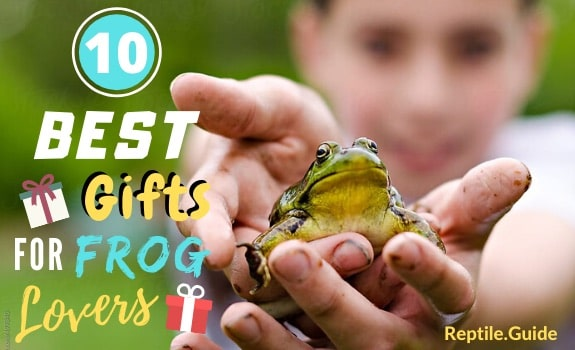 gifts for frog lovers