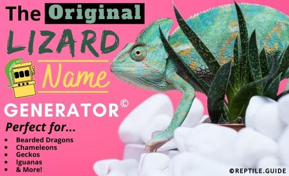 lizard name generator