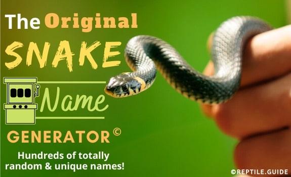 snake name generator