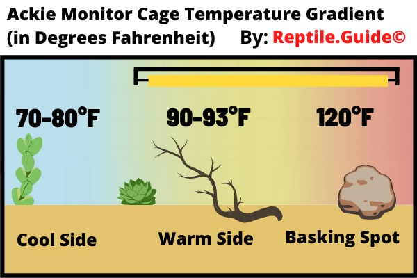 Ackie Monitor Enclosure Temperature
