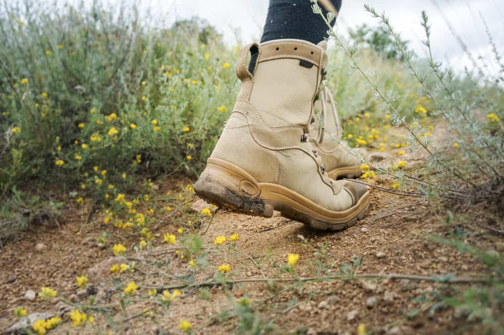 strudy footwear, hiking boots on path